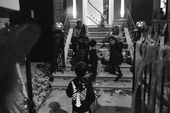 Halloween 2016 in St John's Wood (fabiolug) Tags: dog stairs house halloween stjohnswood night costume costumes kids kid children child people street streetphotography london leicammonochrom mmonochrom monochrom leicamonochrom leica leicam rangefinder blackandwhite blackwhite bw monochrome biancoenero leicaelmarit28mmf28asph elmarit28mmf28asph elmarit28mm leicaelmarit28mm 28mm elmarit leicaelmarit wide wideangle