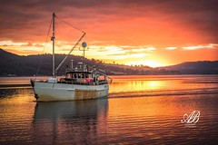 Suns coming up!! (Andrew.Bones) Tags: sun sunset margate hobart tasmania australia fishing boat reflection orange hills water sea seafood commercial work life canon 7dmii saturation colour weathered salary living