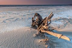 DSC_5473 (Adam Gołąbiewski) Tags: sunset hel peninsula poland pomeranian sun hitechreverse gnd cokin