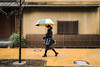 "Yellow Rain (drichi2006) Tags: fujixe1 toritsudaigaku olympuszuiko28mmf35 tokyo rainyday yellow colorphotography thecoloroftokyo 日本 東京 都立大学 雨の日 黄色 ""small town maihomu マイホーム"