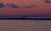 Three men on the reef (frankmh) Tags: reef hittarpreef people man sunset hittarp helsingborg skåne sweden outdoor öresund