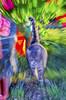 _DSC120027a copy copia (frangio78) Tags: mosso pittorialismo blurred painting pictorialism motion cat gattoinmovimento gatto europeo