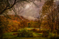 Rainy-Days-and-Mondays (desouto) Tags: nature hdr landscape trees sky color autumn leaves wildfilowers road forest rivers wildflowers clouds snow