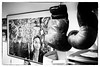 Sarah Ourahmoune et Saïd Bennajem, Boxing Beats, Aubervilliers, France (johann walter bantz) Tags: xf23mmf14r xpro2 fujifilm details boxeanglaise sport 93 aubervilliers boxingbeats clubdeboxe blackwhite monochrome saïdbennajem sarahourahmoune