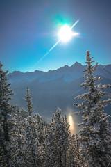 _DSC1348 (andrewlorenzlong) Tags: canada alberta banff national park banffnationalpark gondola banffgondola sulphurmountain sulphur mountain