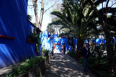 DSC01207(1) (Julia Malm) Tags: mexico city travel family teotihuacan ruins museum frida kahlo casa azul diego rivera flowers stuido dresses cactus paintings view