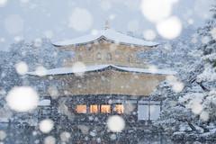 凍てつく金閣寺 (slolin) Tags: 金閣寺 kyoto 京都 雪 snow