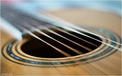 Guitar #1 (Hindrik S) Tags: guitar richwood artistseries gitaar acousticguitar acoustischegitaar wester western circle klankgat snaar strings snaren f18 50mm sonyphotographing sony sonyalpha dt50mmf18sam music muziek closeup macro iso100 sonyslta57 stringedinstrument 2017