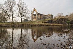 Bolton Abbey Priory (Tom Marshall) Tags: yorkshire landscape winter 2017 scenic dales bolton abbey priory ruins river wharfe