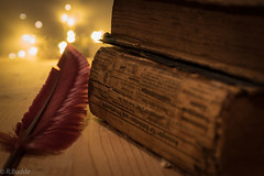 helpful books (Ralf_Budde) Tags: flickr ralfbudde book feather old vintage ambiance spirit reading wood depthoffield golden fotografie