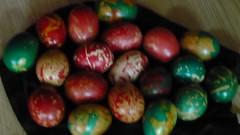 Pestalozzi_Easter 051