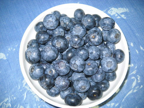 Extra Large Blueberry Fruits a May 18, 2014