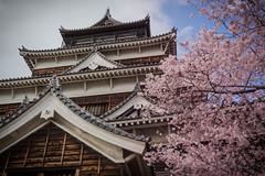 Hiroshima Castle (Carp Castle) (xavier.snyders) Tags: castle japan cherry nikon blossom hiroshima mm 105 18 d3200