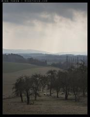 _8B19036 copy (mingthein) Tags: nature zeiss forest t landscape nikon republic czech availablelight apo carl ming cesky raj skala planar otus 1485 onn 8514 hruba d810 thein zf2 photohorologer mingtheincom mingtheingallery