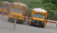Brewster CSD #314 + #315 (ThoseGuys119) Tags: schoolbus icce icre brewsterny icfe bluebirdallamerican leonardbussales brewstercsd