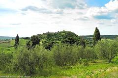 Montichiello, Il borgo, The Ancient village (michele masiero) Tags: italia val siena toscana dorcia montichiello fotosketcher ilborgodimontichiello