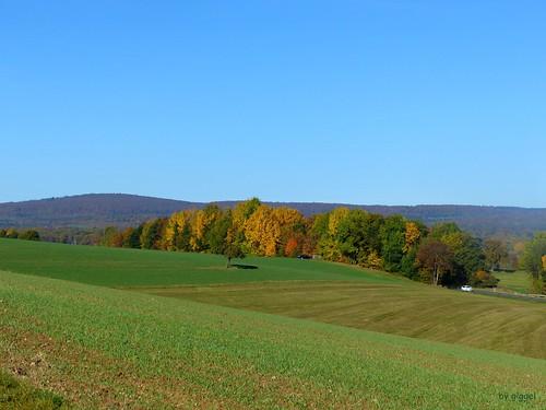 Eckweiler – Blick Richtung  Soonwald