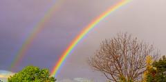 I'm seeing DOUBLE.....HAPPY NEW YEAR......!!!!!!! (Lani Elliott) Tags: sky skies rainbow rainbows doublerainbow glowing bright vibrant wow
