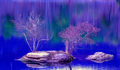 Pure Zen (George McHenry Photography) Tags: lakepinnacle zen lake landscape contemplation blue reflection southcarolina lakeoolenoy tablerockstatepark