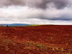 "atherton-tablelands-queensland-australia_30180783125_o • <a style=""font-size:0.8em;"" href=""http://www.flickr.com/photos/146187037@N03/31830040742/"" target=""_blank"">View on Flickr</a>"