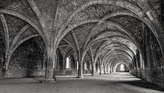 Fountains Abbey Cellar (robbaxter71) Tags: abbey fountainsabbey yorkshire uk 2016 arch ruin old stone tunnel light monochrome longexposure nikon history architecture