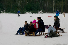 Winter (Natali Antonovich) Tags: portrait winter snow frost sled sleding sledging tradition relaxation nature park lahulpe lifestyle friends family mood christmasholidays christmas belgium belgie belgique