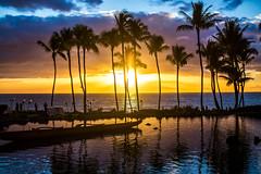 When Your Love is Not Around When the Sun Goes Down (Thomas Hawk) Tags: grandwailea hawaii maui wailea waldorfastoria waldorfastoriagrandwailea beach clouds humuhumu humuhumunukunukuapuaa palmtree restaurant sunset tree fav10 fav25