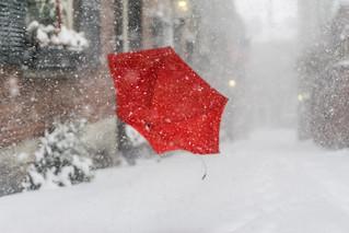 Red Umbrella Flying Away
