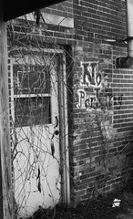 No more parking (inetjoker) Tags: nikon tn tennessee f2 expired clarksville xtol xtol11 apx400 ei320
