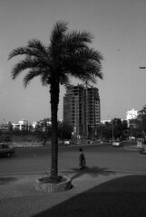(Margarete Elmenhorst) Tags: mumbai kolkata