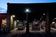 RoundhouseDurangoCO6-13-15 (railohio) Tags: colorado tour trains durango narrowgauge riogrande roundhouse d90 durangosilverton dsng 061315 trains75