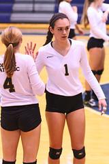 IMG_8030 (SJH Foto) Tags: girls volleyball high school york delone catholic team teen teenager substitution sub rotation