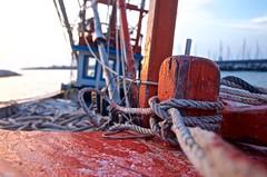 DSC_8423 - Version 2 (izmir3535) Tags: sailorloop loop boat fishermanboat red nikon5100