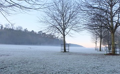 A winter's day on a bright December (John (thank you >1 million views)) Tags: frost fog cold 7dwf winter landscapephotography blaisecastleestate trees woodlands december forest dof bristol england earlymorning