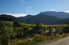 Mountain Profile (davidpemberton78) Tags: mountains autumn shaded lavoulte lhérault languedocroussillon