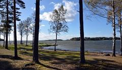Mörudden in Hammarö near Karlstad. Sweden (andantheandanthe) Tags: karlstad sweden hammarö vänern stormy windy kuling water vatten sjö sea hav waves