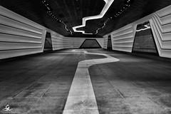 Follow the line (Seany99) Tags: wynyardwalkway bw barangaroo pedestrianwalkway
