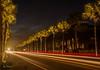 Along the way . . . (Dr. Farnsworth) Tags: street lights palm trees destin cars white red brake longexposure fl florida winter january2017