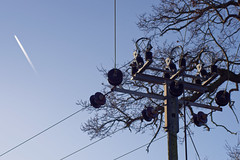 Out in the sticks (jamesallen9) Tags: telegraphtuesdays power powerline tree sky plane jet pole insulaters