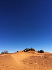 A l'assaut des dunes (Des Goûts et des Couleurs) Tags: maroc sahara morocco desert mhamid orange bleu blue ciel dune dunes liberté calme silence isolement dromadaires caravanes bédouins aventure