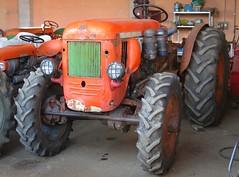 Same Super Same DA 67 DT (samestorici) Tags: trattoredepoca oldtimertraktor tractorvintage tracteurantique trattoristorici oldtractor supercassani