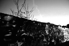 (mlou mlou mlou) Tags: urban bw white black tree wall paint noir lyon tag graff biennale urbex