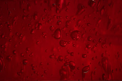 Hell's Gel (The Mad Macrographer) Tags: red abstract macro canon bubbles gel desktopwallpaper t1i