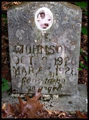 James (~ Lone Wadi ~) Tags: barnettchapelcemetery headstone tombstone gravestone neglected abandoned landbetweenthelakes landbetweentherivers lbl africanamerican death lyoncounty finalrestingplace kentucky