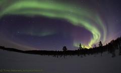 7O9A6320 (Hotel Korpikartano) Tags: revontulet northernlights northernfinland inarilapland auroraborealis menesjarvi korpikartanofi winter arcticantarctic