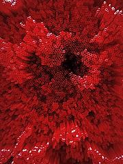 Red-straws-or-axon-bundles--2016-07-06-15.55.34.34 (mbgmbg) Tags: boost desaturate fpasquali francescapasqualiredstraws i0genc16 kw2flickr kwgooglewebalbum kwphotostream5 kwpotppt london lumoish masterpiece2016 pasquali redstrawsoraxonbundles redstraws series seriesredstraw takenbymarkgerstein