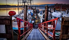 AHOY MATEY ! (Images by Christie ♪♫ Happy Clicks for 2017 !) Tags: dock moored boats sunset ramp mapleridge bc canada boat fishingboats fraser river fraserriver marina riverbank docks