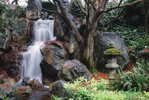 Thumbnail from Japanese Friendship Garden