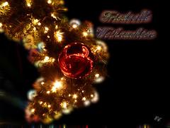 Weihnachtsgruß / Merry Christmas Greeting ☆24.Dezember 2016 (Ellenore56) Tags: 24122016 weihnachtsgrus grus weihnachten holidaygreeting xmas xmasgreeting christmasregards froheweihnachten friedvolleweihnachten merrychristmas joyeuxnoel buonnatale feliznavidad shengdankuaile mutlunoeller christmas noel nowell yule chrimbo 24dezember2016 glaedelingjul goodjul friede frieden peace liebe love gesundheit health licht light card carddenoel emotion inspiration imagination faszination magic magical moment weihnachtswünsche ellenore56 ellenorecremers text buchstaben schrift lyrics words word letter type script writing font writ beschriftung lettering inscription marking artwork gedanken idea mind spirit stimmung mood atmosphere leuchten luminaire glow luminous