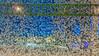 6.1.2017 Perjantaiaamu Fridaymorning Turku Åbo Finland (rkp11) Tags: åbo southwestfinland finland 612017 perjantai aamu friday morning turku pakkanen kylmä frost frosty loppiainen epiphany tammikuu january enero gennaio 1月 一月 1월 styczeń janvier januar มกราคม января talvi winter invierno inverno 冬 冬季 겨울 zima hiver ฤดูหนาว kış зима nokialumia lumia1020 hdr hdrphotorealistic pureview hdrefexpro2 dawn aamunkoi aamunkajo kupittaa bkuesky sinitaivas jääkukat jääkiteet icecrystals iceflowers busstop bussipysäkki kupittaanpuisto cold freezing